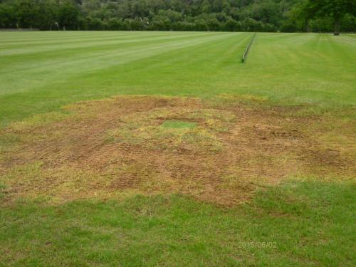Polo pitch with hidden access hole